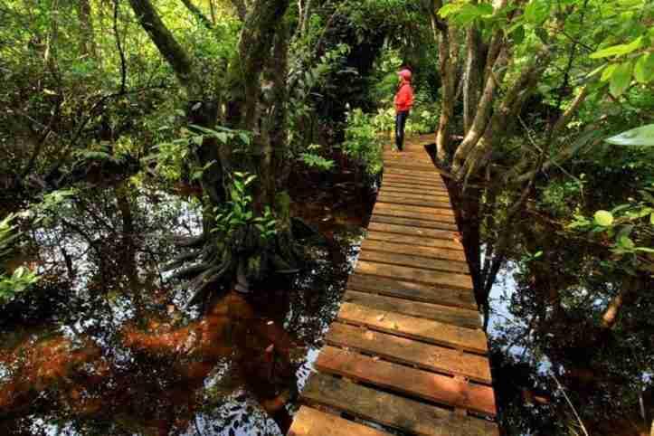 áreas protegidas de La Ceiba