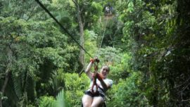 Sambo Creek Canopy Tours
