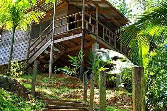 La Ceiba - Cabañas del Bosque