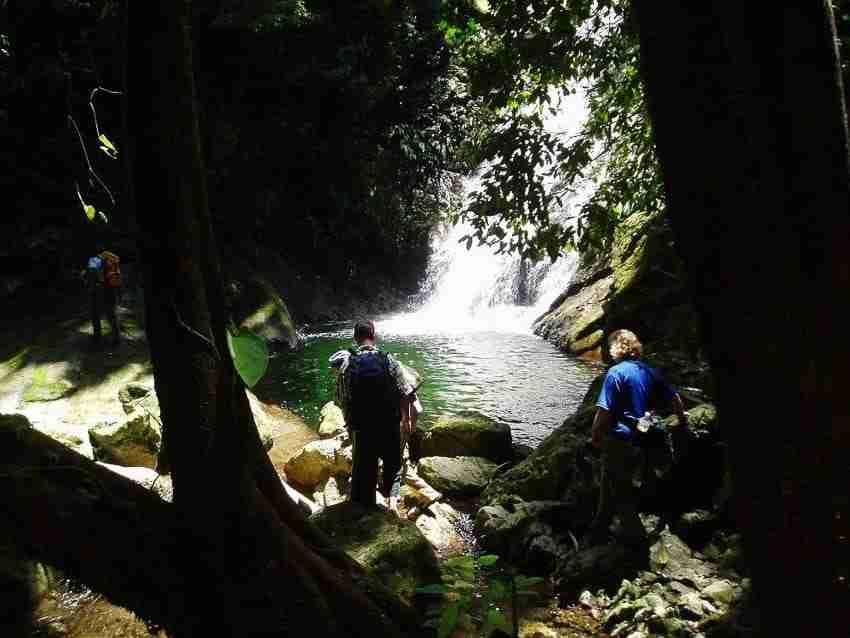 jungle hike (10)