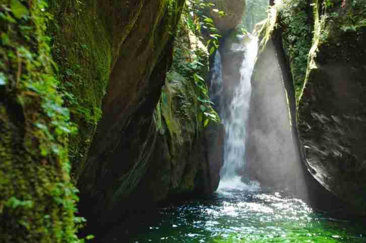 Poza del Rio Zacate de Pico Bonito