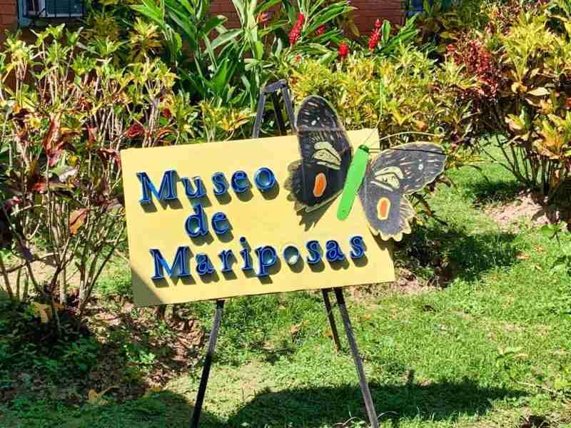 Museo de Mariposas de La Ceiba