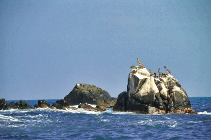 Parque Nacional punta izopo