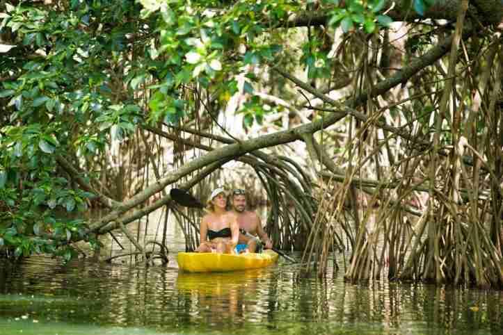 Kayaking en Laguna de los Micos