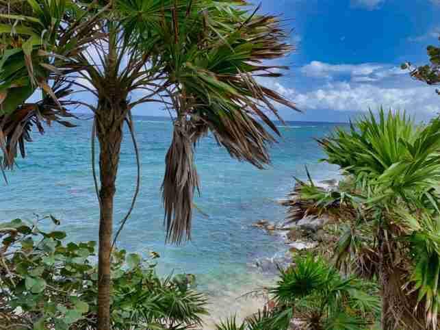 Una Vista del Caribe desde Paya Bay