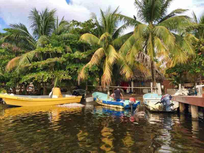 Los Olingos Lodge at Los Micos Lagoon